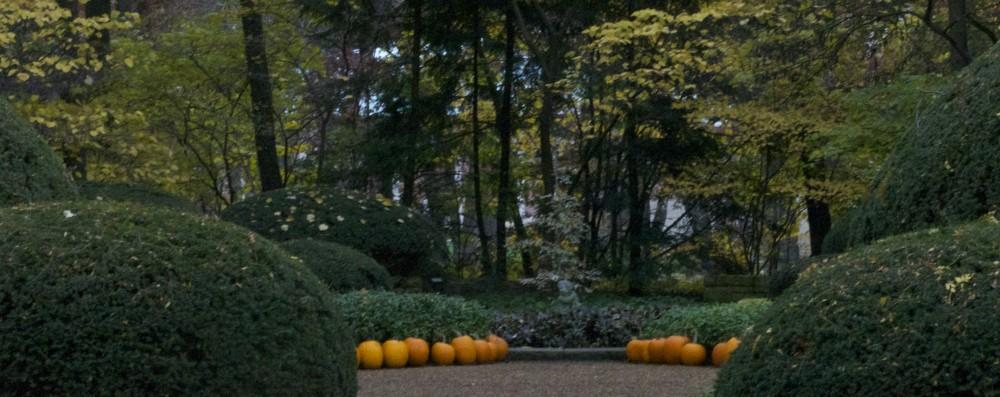 Garden Club of Oak Park – River Forest