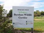 Burnham Wildlife Corridor at 31st Street