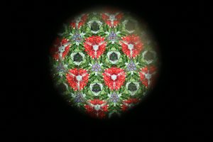 Kaleidoscope_0401