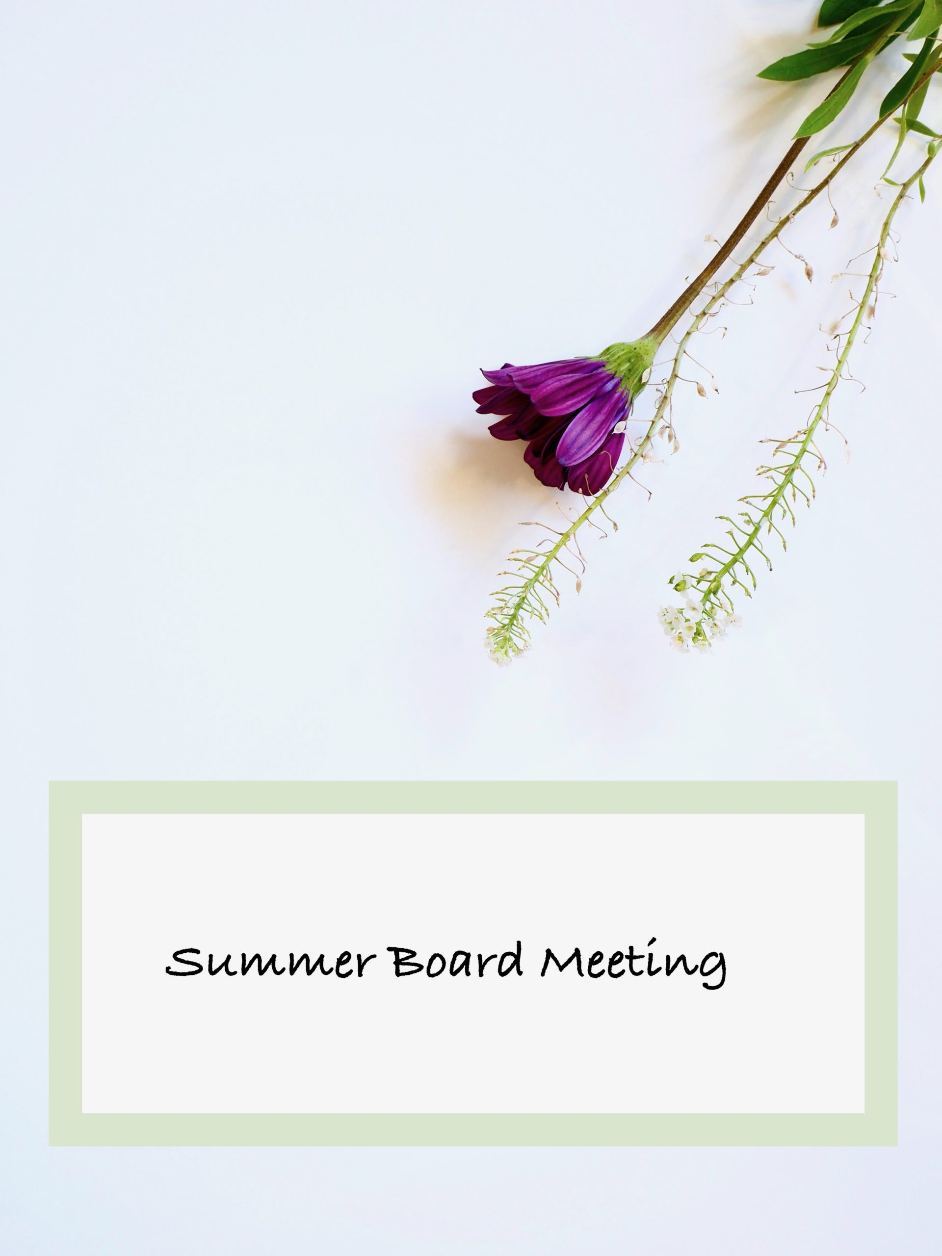 Summer Board Meeting
