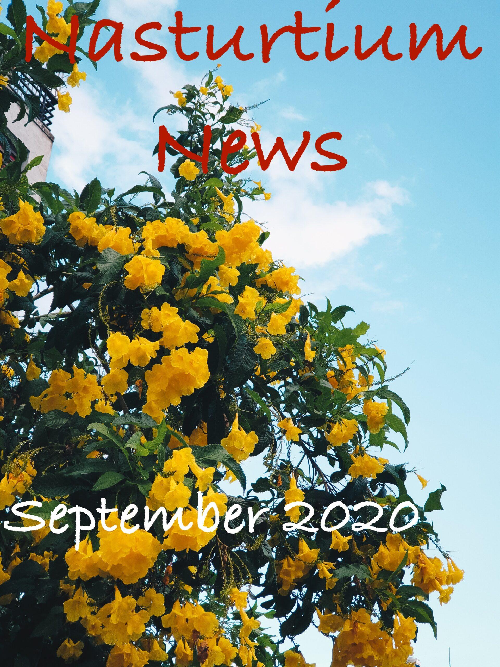 Nasturtium News September 2020