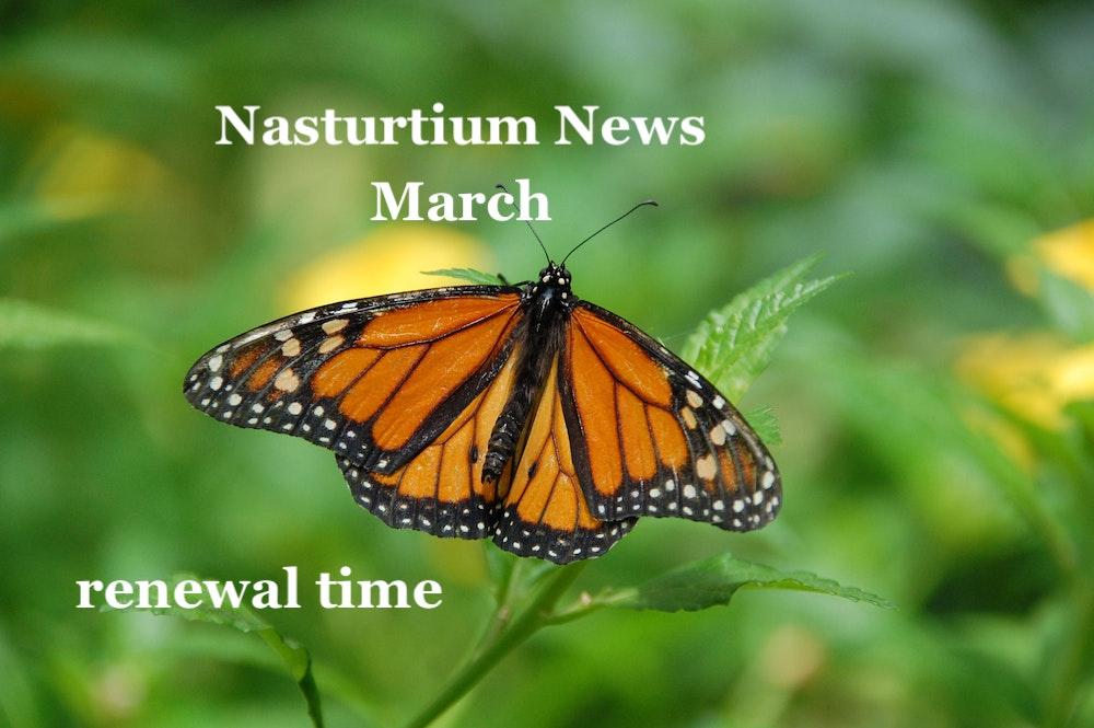 Nasturtium News, March 2021