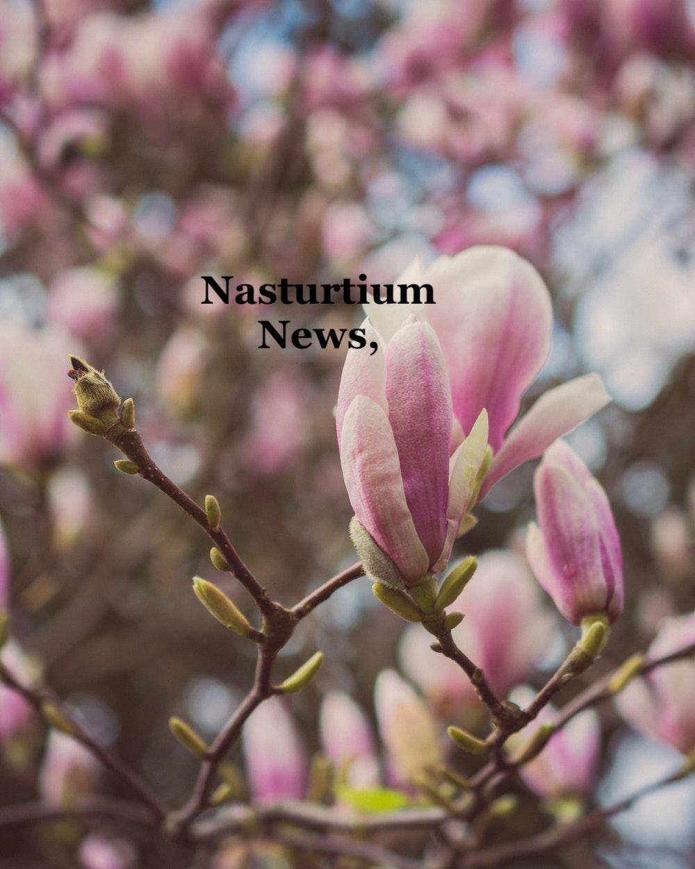 Nasturtium News, April 2021